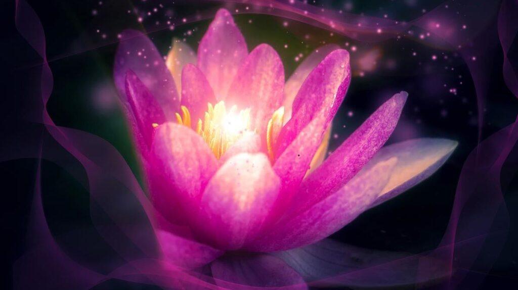 Цветок лотоса - символ духовного раскрытия
