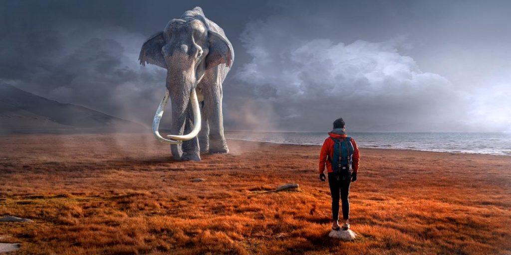 Человек стоит в отдалении от огромного слона