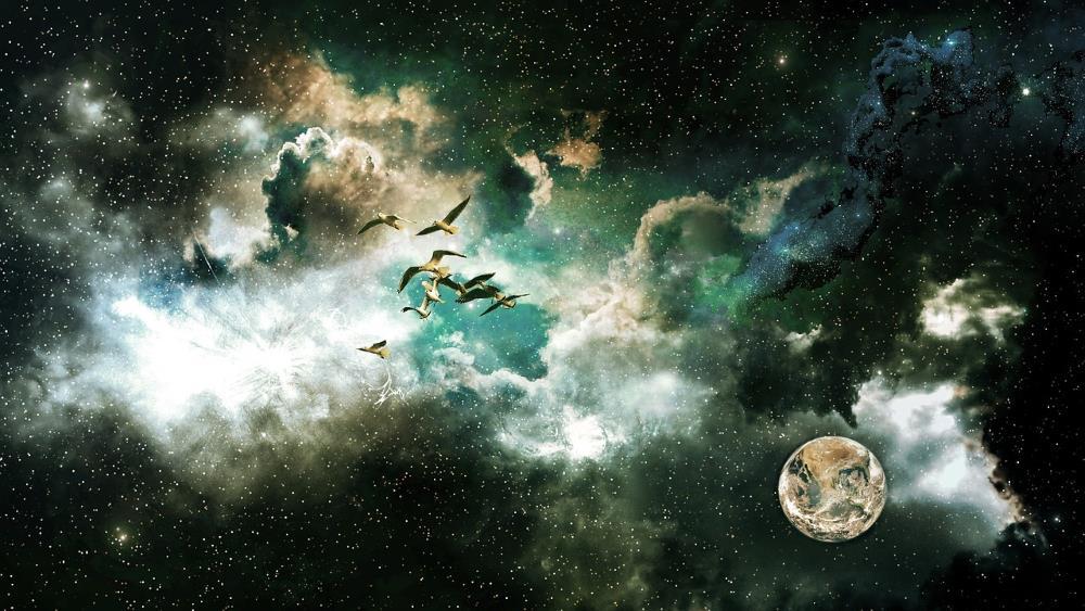 Безграничное пространство небес и космоса, усыпанное звёздами