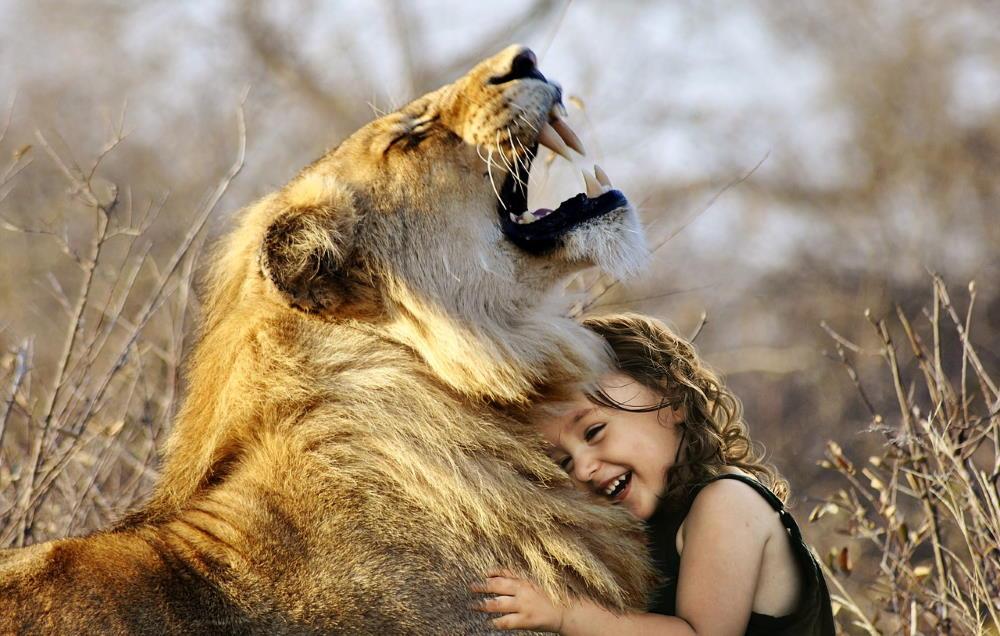 Девочка, смеясь, обнимает льва - принятие силы чувств