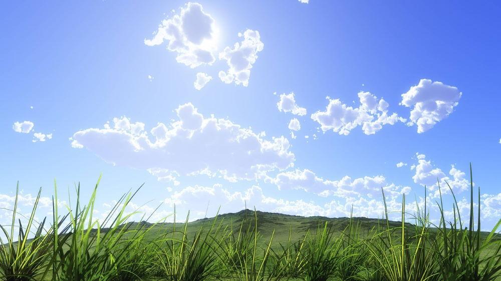 Проясняющееся небо над летней зеленью