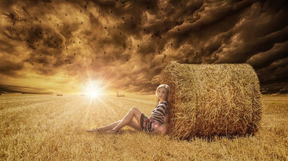 Две крайности: солнечный свет и затянутое тёмными тучами небо