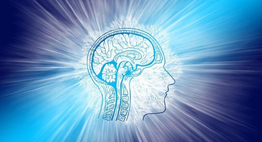 Свет позитива, озаряющий пространство вокруг мозга